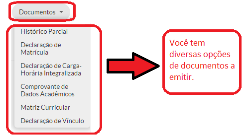 Emitir_ou_VIsualizar_Documentos_03.png